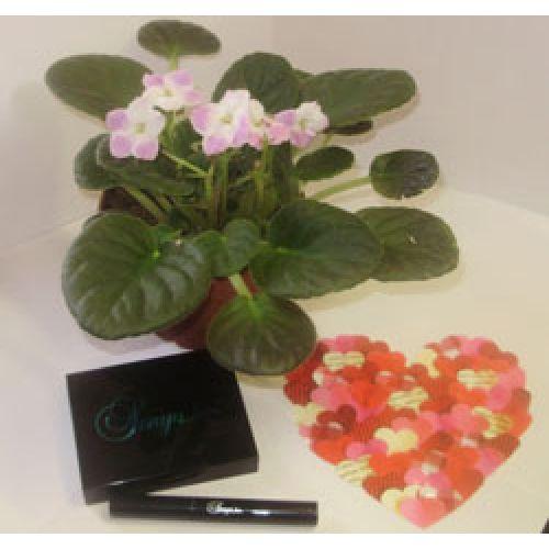 Подарки для Женщин ко дню Святого Валентина.
