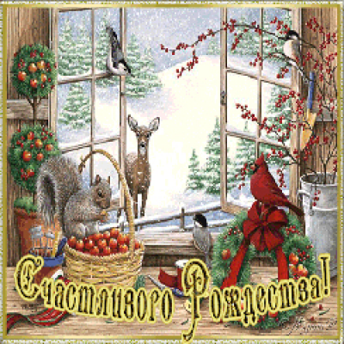 Видео: С Рождеством Христовым!