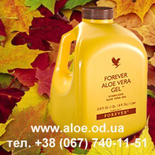 В желтой банке Гель Алоэ, когда осень на пороге!