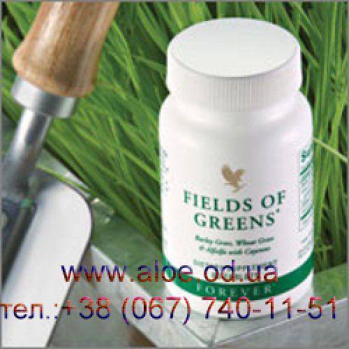 Зеленые Поля или Филдз оф Гринз.