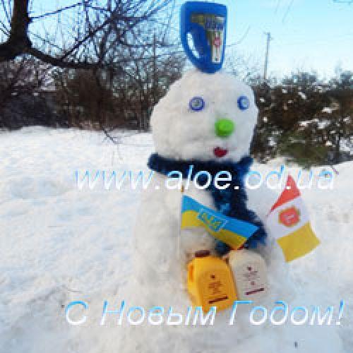 Снеговик поздравляет с Новым годом!Ч